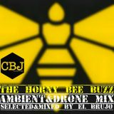 THE HORNY BEE BUZZ - AMBIENT & DRONE MIX by El Brujo