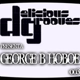 DELICIOUS GROOVES 003 . DJ GEORGE B. HOBOE