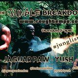 THE JUNGLE BREAKDOWN SHOW Dj Uzi, Yush, Peluso and Jaguar Paw @ www.roughtempo.com 23.07.15