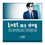 Lost My Dogcast 67 - Giom