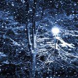 ER - Winter013 Mix (20131216)