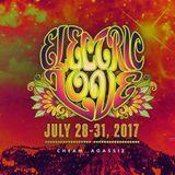 Electric Love 2017