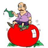 Old Men Stories Episode 127: Gardening