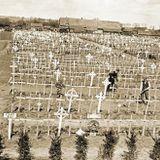 MIchael Fiechtner: Burying the Dead of the Great War