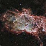 NGC-2024