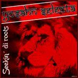 Yosahn Selecta - Seekin di Roots