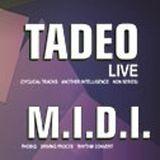 M.I.D.I. Live @Sunshine Music Fest W/ Tadeo
