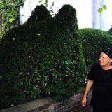 Martin Newell's Oddcast 16 Deep in the Garden