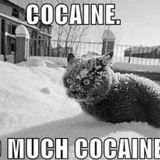 Underiu$ @ Anti-Cocaine Rave Mix