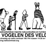Teknotika Man @Flanders Techno /1999/ Brugges