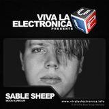 Viva la Electronica pres Sable Sheep (Moon Harbour)