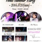Vibus Summer Party MIX