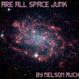 Nelson Muchoki - We Are All spAce juNk 001