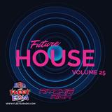 DJ Ritchie Rich - Future House Mix Vol. 25