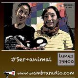 Ser más Animal 15 - 09 - 2014