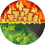 NJO! - Burn Babylon Breakz