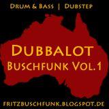 Buschfunk Vol. 1