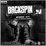 BACKSPIN FM # 317 - Best of Stieber Twins