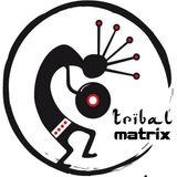 Tribal Matrix