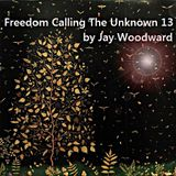Freedom Calling The Unknown 13 by Jay Woodward