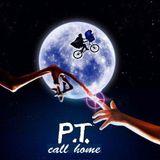 Rezavé struny 35 - koncert P.T. call home