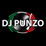 Nocturnal Vibes #277 - Mixed by: DJ Punzo