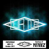 The Turtle Walk Mix #3 - YETEEZ