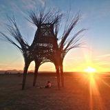 BRC: Desert Sunset [September 2013]