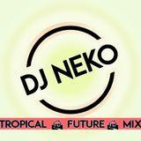 Dj Neko  Mix House