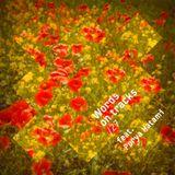 Words On Tracks /27 feat. Porya Hatami