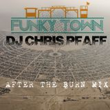 After the Burn mix 2014