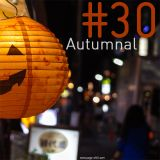 PoGo's Chill - Vol 30 (Autumnal)