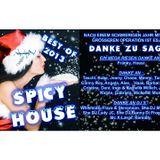 DJ XXL - SPICY HOUSE BEST OF 2013
