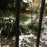 Zeitumstellung & erster Schnee...