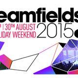 Steve Aoki live @ Creamfields 2015 (Daresbury, UK) – 30.08.2015