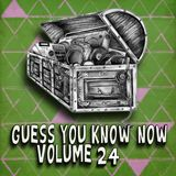 Guess You Know Now Vol. 24