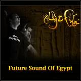 Aly & Fila - Future Sound Of Egypt 333