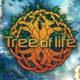 Johnny Blue @ Tree Of Life Festival 2014 (Lake Stage)