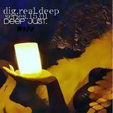 DigRealDeep_series_15.01