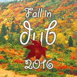 Fall in dub 2016