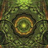 Lost Knowledge mix by Salamandra