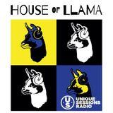 House of Llama 03.10.2018