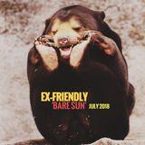Ex-Friendly 'Bare Sun' July 2018 Mix