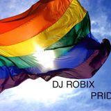 DJ ROBIX - PRIDE 2012