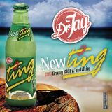 NEW TING - 2014 Groovy Soca Mix