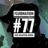 Fluidnation #77