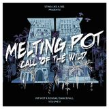 MELTING POT II - CALL OF THE WILD - REGGAE meets HIPHOP