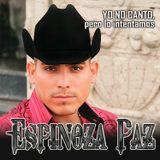 DJ-MEI - Espinoza Paz VS La Arrolladora Banda Limón SetMix