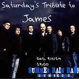 James (Tim Booth) @ Saturday's Tributes