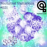 Nocturnal Visitations #021